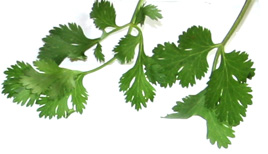 check some parsley today